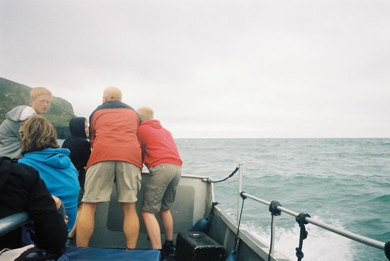 SeaMor Dolphin Watching Boat Trips: Hold on here's another big wave!