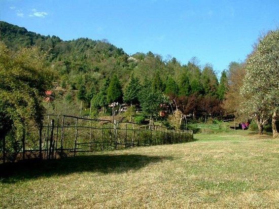 Shivapuri Village: Sprawling lawns and outdoors