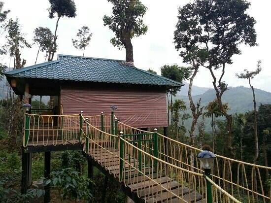 Kaivalyam Retreat: tree house