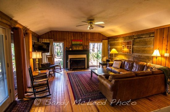 Living Room Pat s Place Picture of Asheville Cabins of Willow