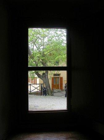 Casa Di Giotto : view