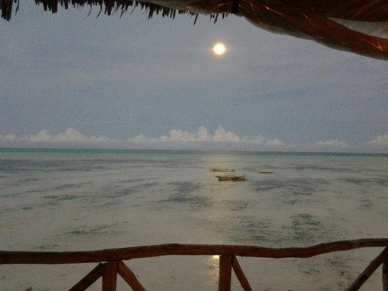 Coral Rock Hotel: View from the bar