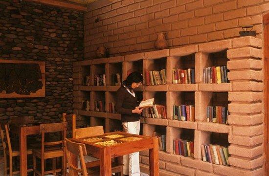 Lodge Andino Terrantai: Colección de libros antiguos