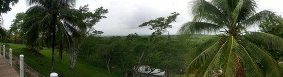 Rumors Resort : Panoramic view of the jungle from behind the hotel