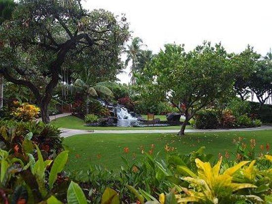 Fairmont Orchid, Hawaii: 庭