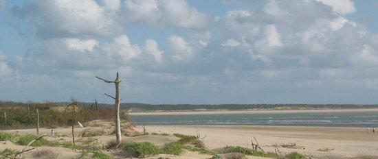 Oléron Char à Voile : Arrivée sur notre site estival plage de Maumusson