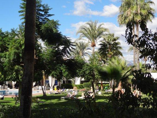 Meliá Marbella Banus: Le jardin