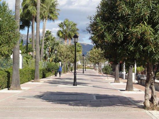 Melia Marbella Banus: La promenade vers Puerto banus