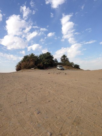 Habibitours - Day Tours : A small oasis in the middle of sahara