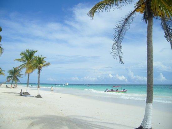 comida para llevar playa paraiso