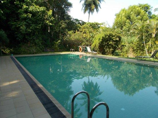Sri Gemunu Beach Resort: Pool