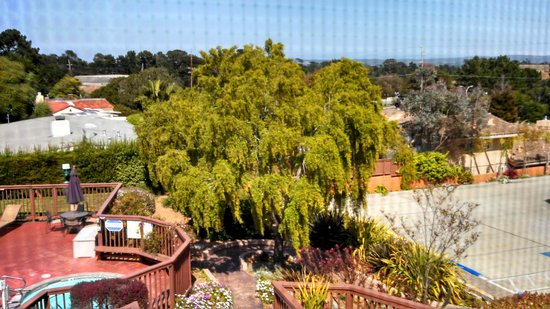 Mariposa Inn and Suites: View out back of property
