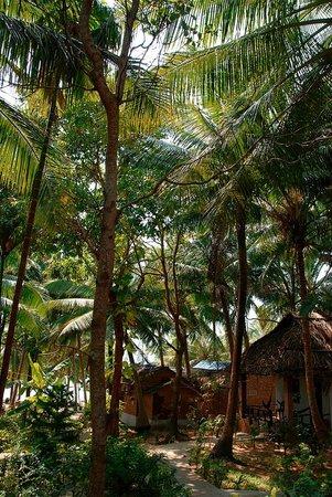 Hoa Nhat Lan Bungalow: les bungalows