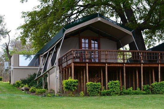 Sabie River Bush Lodge Our luxury tent & Our luxury tent - Picture of Sabie River Bush Lodge Hazyview ...