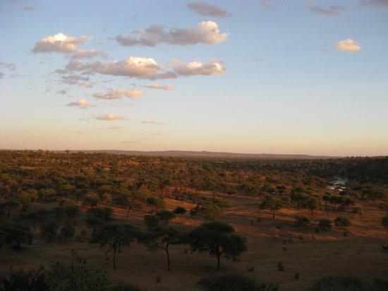 Tarangire Safari Lodge: View from the terrace