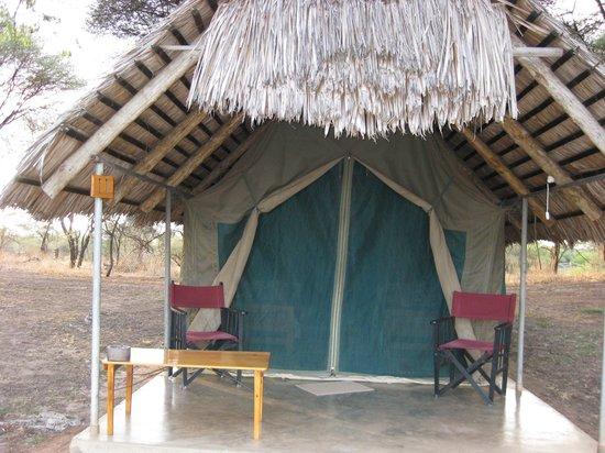 Tarangire Safari Lodge: The tents