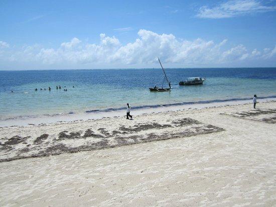 Neptune Beach Resort: Gesäuberter Strandabschnitt vor dem Hotel