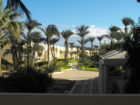 Zephir Hotel & Spa: vue de la chambre