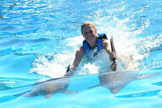 Dolphin Discovery Puerto Vallarta: Riding the dorsal fins