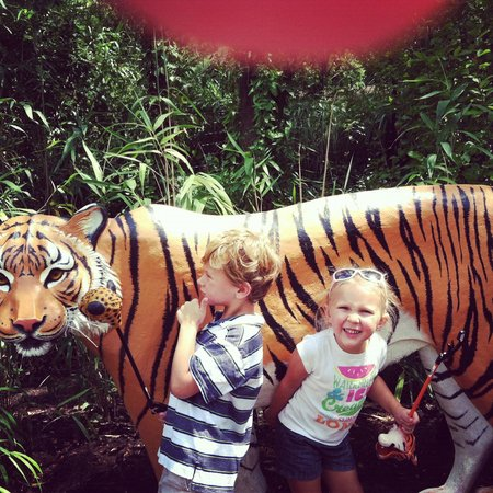 Cincinnati Zoo & Botanical Garden: Roar!