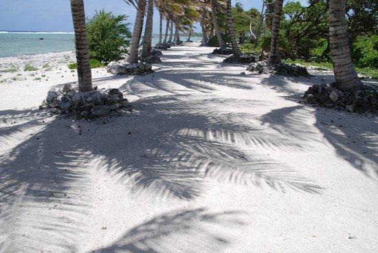 Aitutaki Lagoon Resort & Spa: Walking around the resort