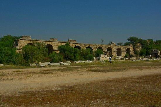 Roman Hippodrome: arena and seats - Picture of Roman Hippodrome, Sur - TripAd...