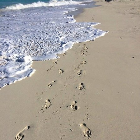 The Venetian on Grace Bay: Grace Bay Beach