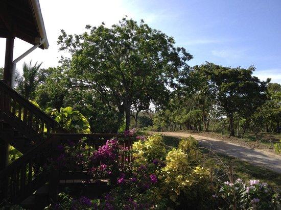 Sea Breeze Inn: View from staris landing