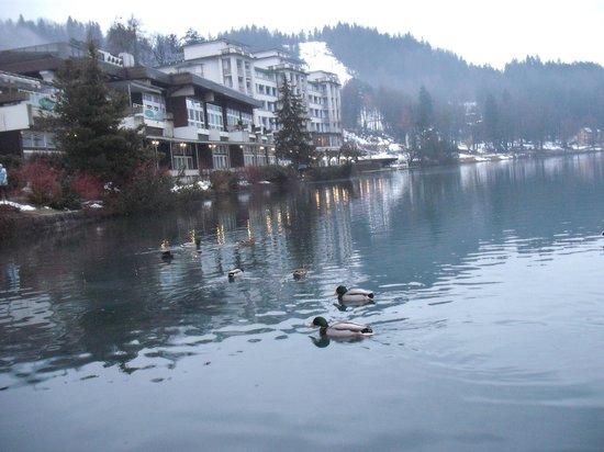 Hotel Ribno : озеро Блед