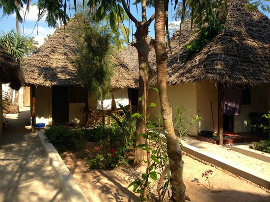 Mohammed's Beach Bungalows: Center yard