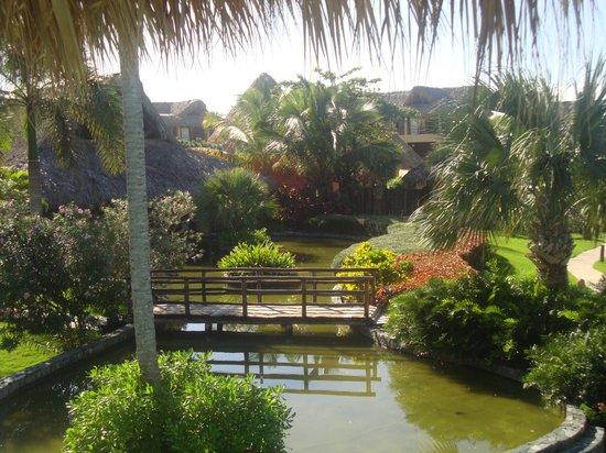 Zoetry Agua Punta Cana : garden view