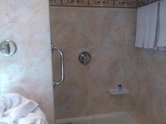 Hotel Albret: Bañera