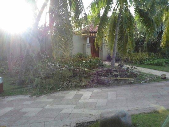 Banyan Tree Sanya: после урагана