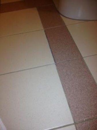 Four Points by Sheraton Winnipeg International Airport: Tile in bathroom...