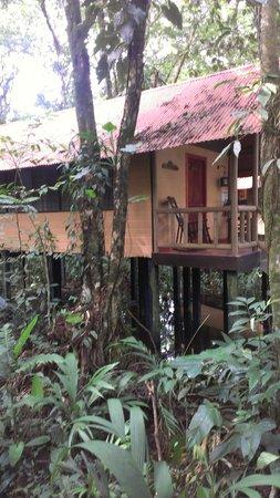 Evergreen Lodge: Bungalow