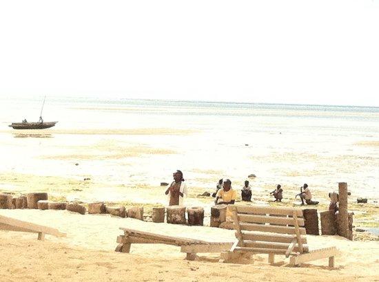 Jacaranda Beach Resort : Paradiso.. Anke con i beach boys ��