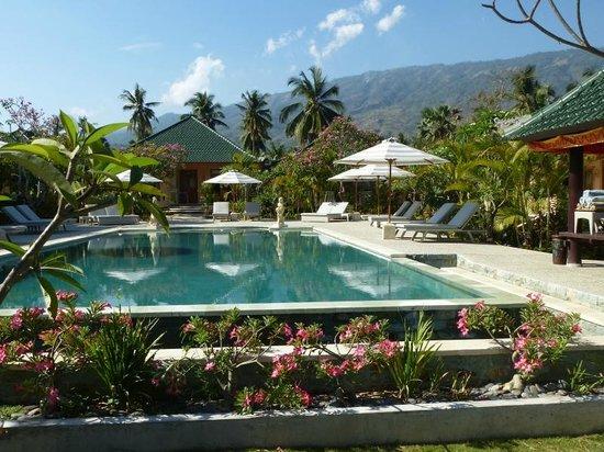 Poinciana Oceanside Resort & Retreat Centre: Blick landeinwärts
