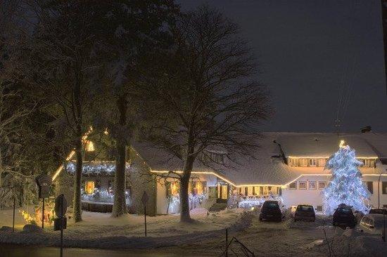 Hochkopfhaus zum Auerhahn: Auerhahn im Winter