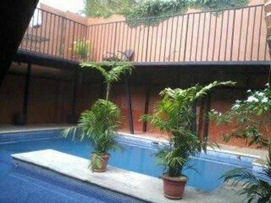 Monte Campana Jaco: La piscina a modo de jardín interior