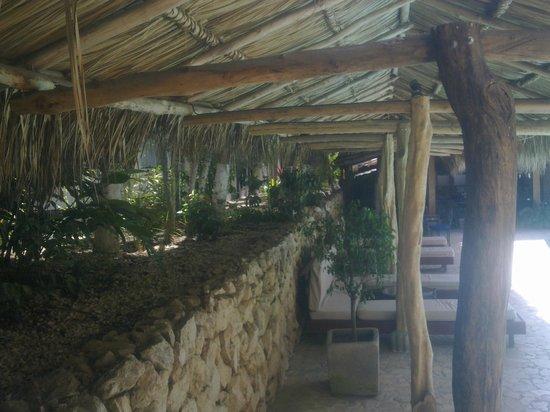 Hotel Coco Beach & Casino: zona piscina