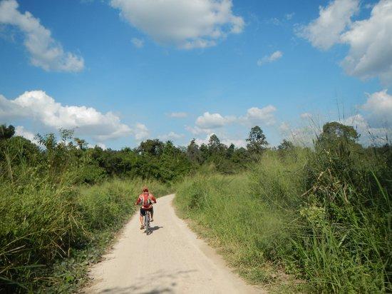 Chiang Mai Mountain Biking & Kayaks : Cruising
