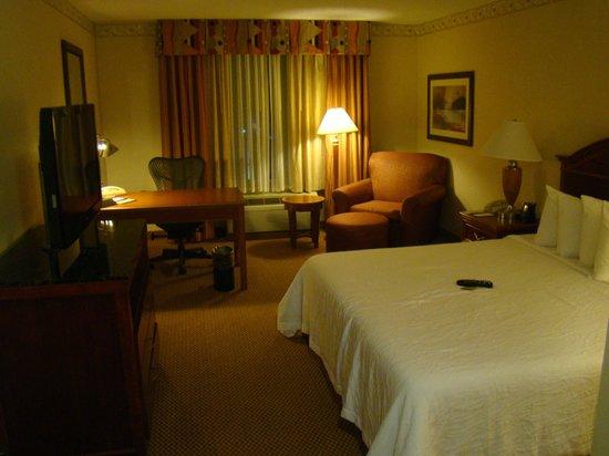 Hilton Garden Inn Gettysburg : Living area