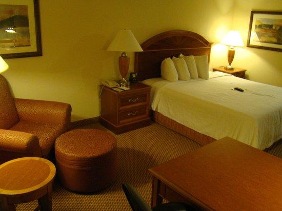 Hilton Garden Inn Gettysburg: Living area
