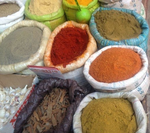 Caracolatours Morocco Travel&Tours-Day Tours