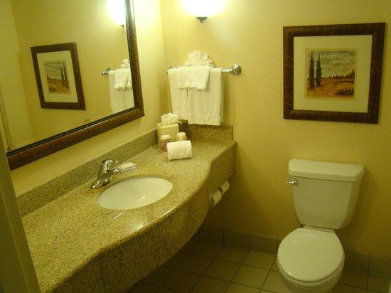 Hilton Garden Inn Gettysburg : Bath