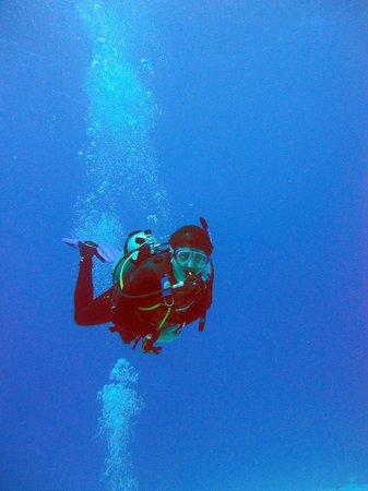 Blue Life Centro de Buceo: Blue Wall, San Andres Islas, Colombia