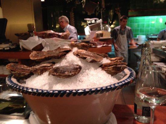 Nou Manolin: Frische Austern