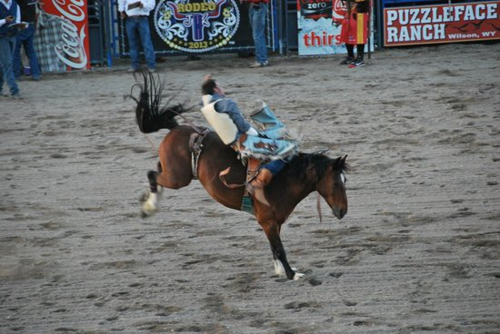 Spotted Horse Ranch : rodeo