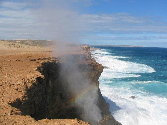 Dirk Hartog Island: Blow Holes