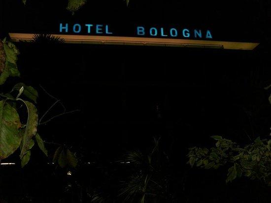 Hotel Terme Bologna: Вид на отель